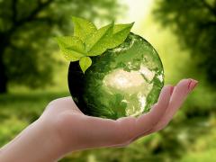 2019年自動車取得税が廃止?新税「環境性能割」とは?エコカー減税の適用は?