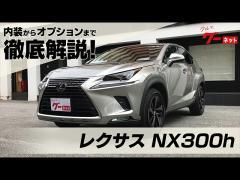 レクサスNX300h(LEXUS NX300h) グーネット動画カタログ