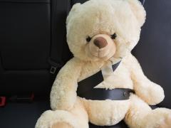 車のダッシュボードにぬいぐるみを置くと違反ってホント!?注意点や置き方のポイントを解説