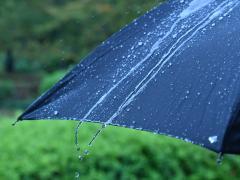 車を濡れた傘で汚したくない!傘をしまう時のコツや正しい乾かし方などを紹介