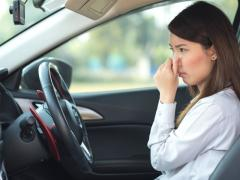 【車を消臭】タバコやペットなど、車内の嫌な臭いの原因と消臭方法