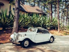 車の歴史と未来予測!車の誕生から日本車の進化を解説