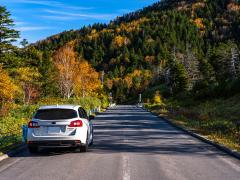 秋の運転で注意すべきポイントや事故を起こさない対策方法